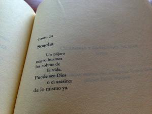 Maria Mercedes Carranza