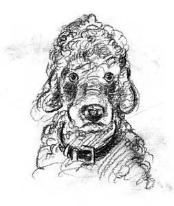 John Steinbeck's poodle, Charley