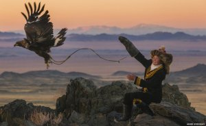 Eagle huntress fly