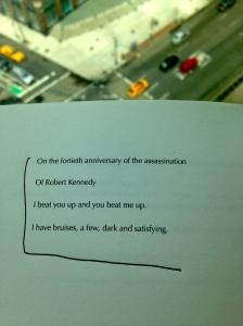 Ariana Reines Poetry Lit Literature