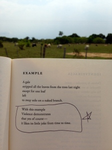 Poetry Wislawa Szymborska