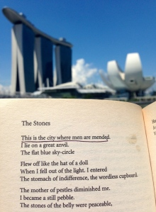 poetry plath lit literature
