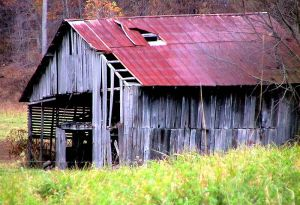 800px-Abandoned_horse_barn_in_autumn_fall