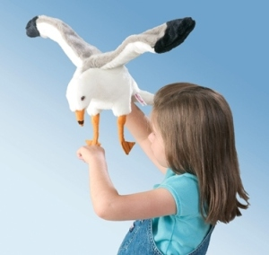girl with pet seagull
