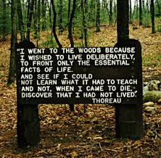 """I went to the woods"" -- lines from Thoreau's Walden, on sign near his cabin site at Walden Pond"