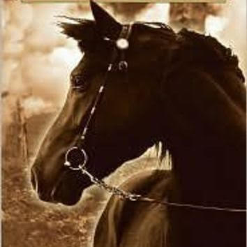 War Horse, from cover photo for Scholastic Press edition (author Michael Morpurgo)