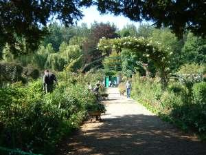 fig. 1 Monet flower garden