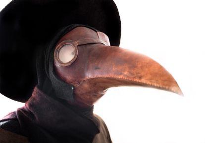 Medieval bird mask