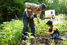 gardening, man and child